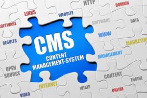 Content Management System(CMS)